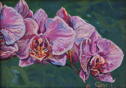 Painting of purple orchids